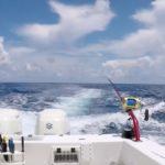 offshore fishing charters boynton beach fl